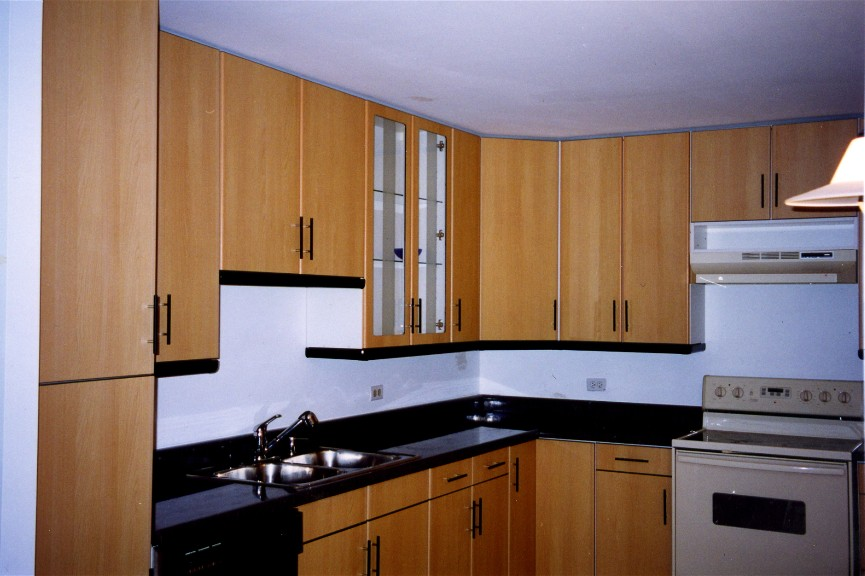 Adagio European Kitchen Cabinets Bathroom Vanities In Chicago  Illinois.Custom Contemporary Modern Frameless Remodeling